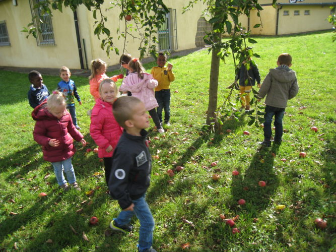 Découverte de l'allemand chez les plus grands de maternelle.